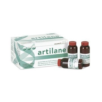 ARTILANE 15 AMP